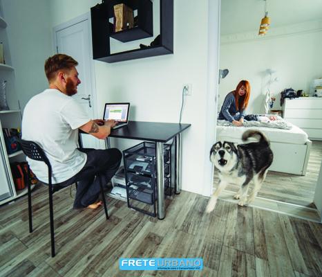 Moro em apartamento, posso ter um cachorro?